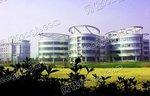 上海精细化工产业园区